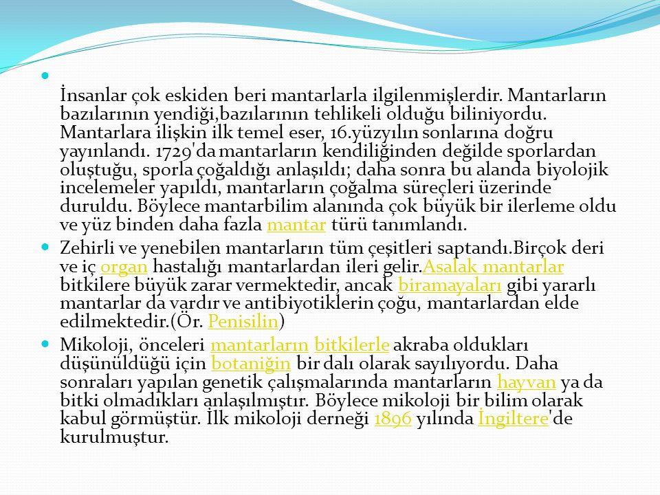 MİKOLOJİ :Mikoloji veya Mantar bilimi ya da Mantarbilim, Botaniğin, mantarlara ilişkin bölümüdür. Mantarlar alemini, onların genetik, biyokimyasal ve
