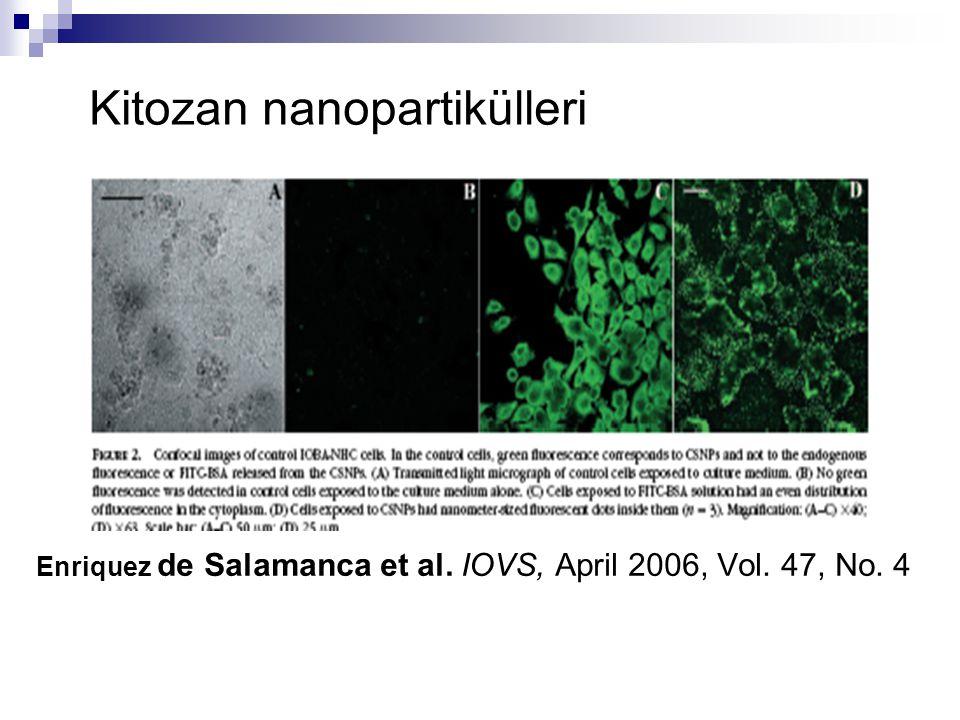 Enriquez de Salamanca et al. IOVS, April 2006, Vol. 47, No. 4 Kitozan nanopartikülleri