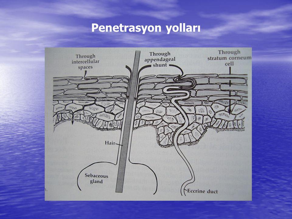 Penetrasyon yolları