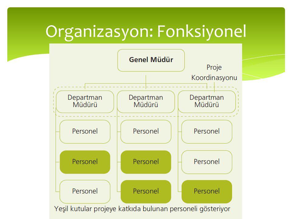 Organizasyon: Fonksiyonel