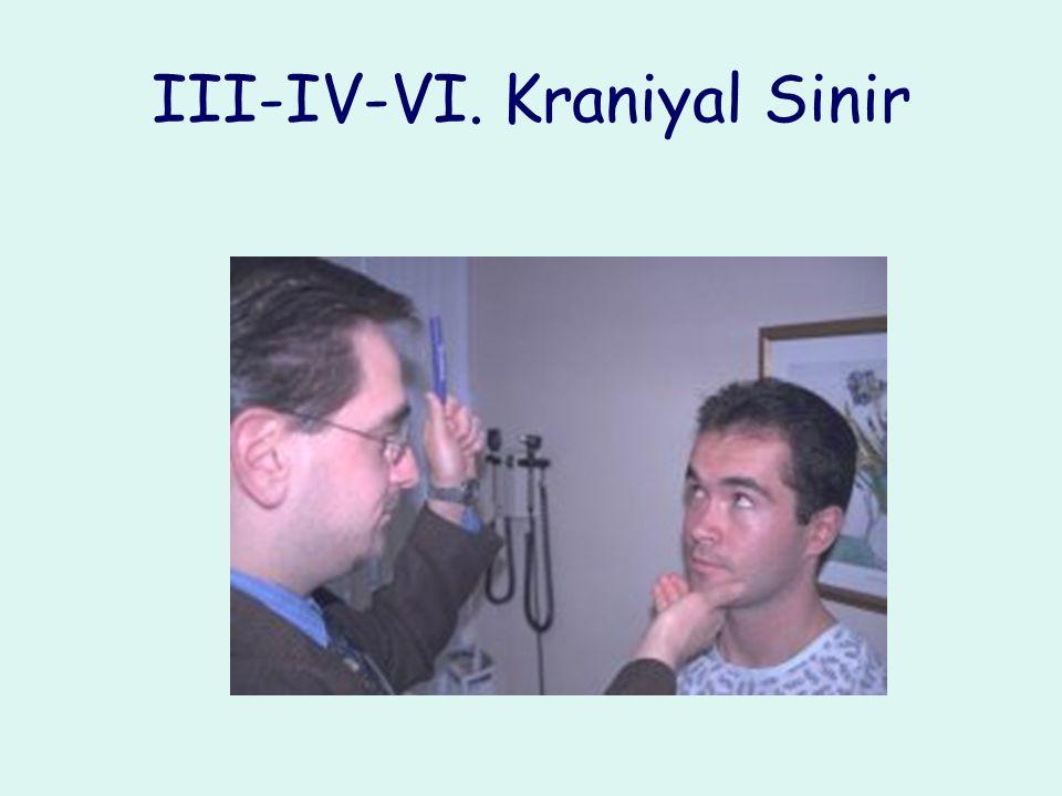 III-IV-VI. Kraniyal Sinir