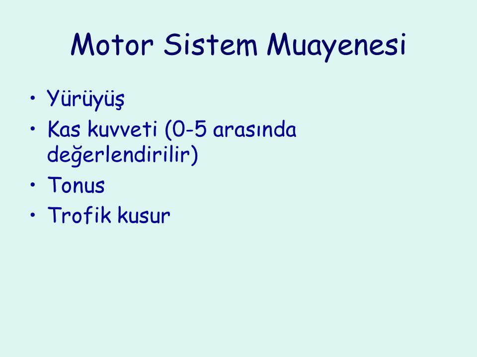 Motor Sistem Muayenesi Yürüyüş Kas kuvveti (0-5 arasında değerlendirilir) Tonus Trofik kusur