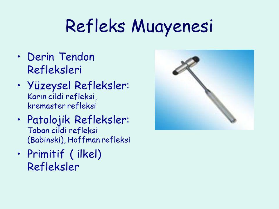 Refleks Muayenesi Derin Tendon Refleksleri Yüzeysel Refleksler: Karın cildi refleksi, kremaster refleksi Patolojik Refleksler: Taban cildi refleksi (B