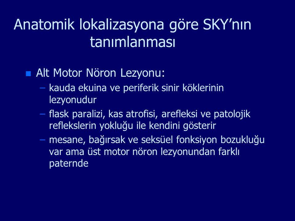 Anatomik lokalizasyona göre SKY'nın tanımlanması n n Alt Motor Nöron Lezyonu: – –kauda ekuina ve periferik sinir köklerinin lezyonudur – –flask parali