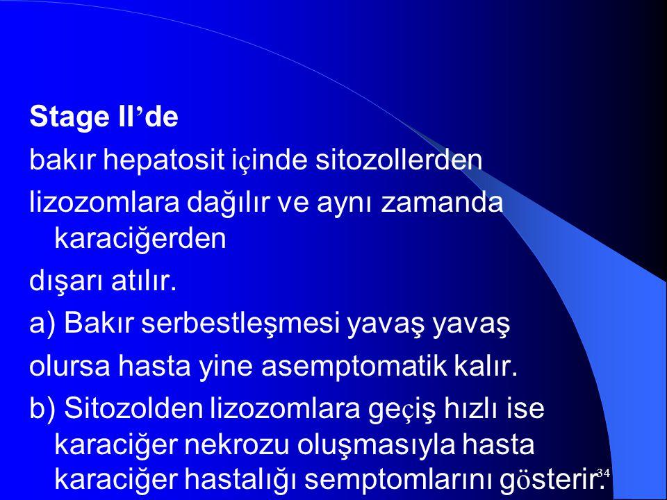 34 Stage II ' de bakır hepatosit i ç inde sitozollerden lizozomlara dağılır ve aynı zamanda karaciğerden dışarı atılır.