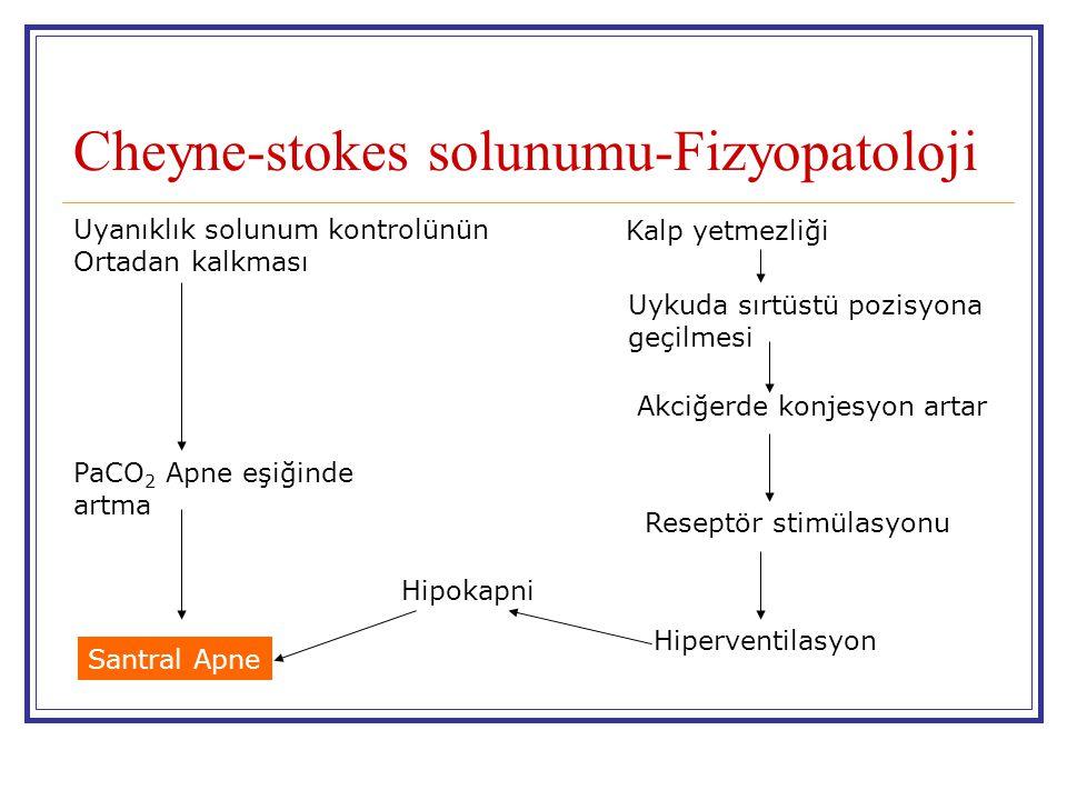 Cheyne-stokes solunumu-Fizyopatoloji Uyanıklık solunum kontrolünün Ortadan kalkması Uykuda sırtüstü pozisyona geçilmesi Akciğerde konjesyon artar Rese