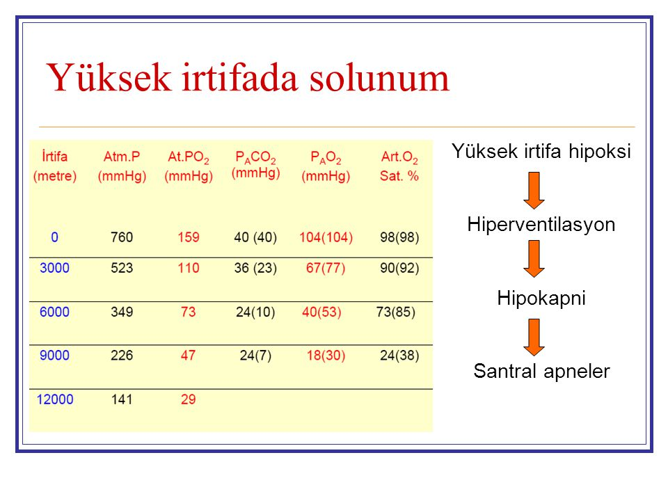 Yüksek irtifada solunum Yüksek irtifa hipoksi Hiperventilasyon Hipokapni Santral apneler