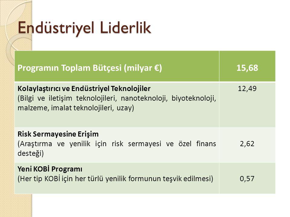 Endüstriyel Liderlik Programın Toplam Bütçesi (milyar €)15,68 Kolaylaştırıcı ve Endüstriyel Teknolojiler (Bilgi ve iletişim teknolojileri, nanoteknoloji, biyoteknoloji, malzeme, imalat teknolojileri, uzay) 12,49 Risk Sermayesine Erişim (Araştırma ve yenilik için risk sermayesi ve özel finans desteği) 2,62 Yeni KOBİ Programı (Her tip KOBİ için her türlü yenilik formunun teşvik edilmesi)0,57