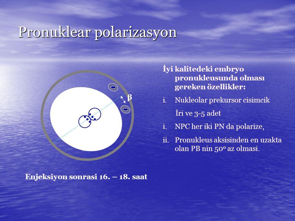 Pronuklear polarizasyon β Enjeksiyon sonrasi 16. – 18. saat İyi kalitedeki embryo pronukleusunda olması gereken özellikler: i.Nukleolar prekursor cisi
