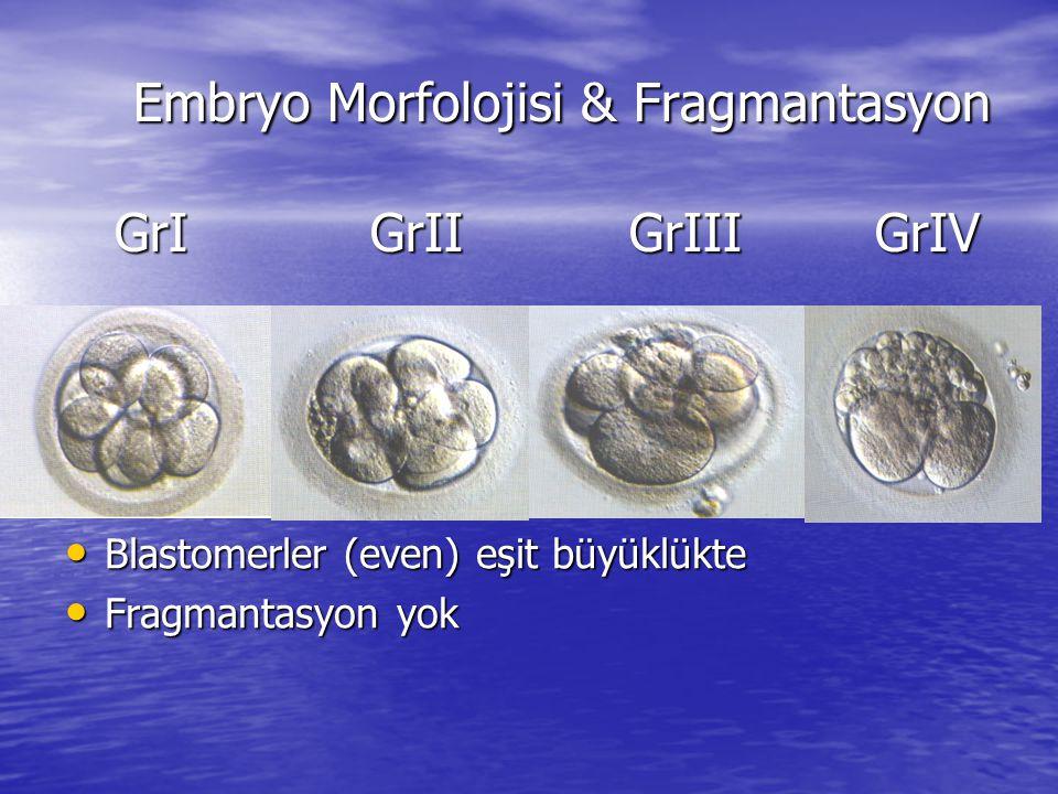 Embryo Morfolojisi & Fragmantasyon GrI GrII GrIII GrIV Embryo Morfolojisi & Fragmantasyon GrI GrII GrIII GrIV Blastomerler (even) eşit büyüklükte Blastomerler (even) eşit büyüklükte Fragmantasyon yok Fragmantasyon yok