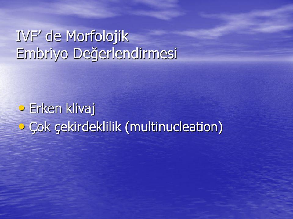 IVF' de Morfolojik Embriyo Değerlendirmesi Erken klivaj Erken klivaj Çok çekirdeklilik (multinucleation) Çok çekirdeklilik (multinucleation)