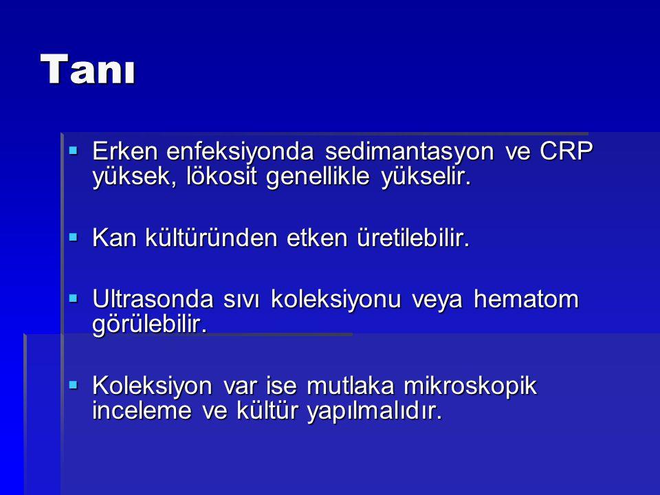 Tanı  Erken enfeksiyonda sedimantasyon ve CRP yüksek, lökosit genellikle yükselir.  Kan kültüründen etken üretilebilir.  Ultrasonda sıvı koleksiyon