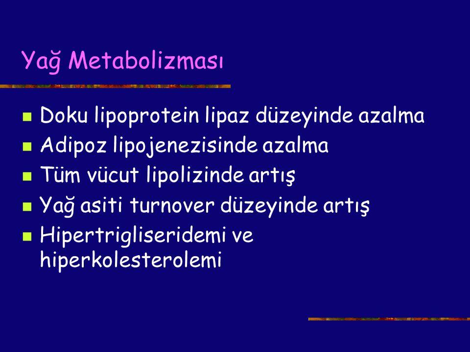 Yağ Metabolizması Doku lipoprotein lipaz düzeyinde azalma Adipoz lipojenezisinde azalma Tüm vücut lipolizinde artış Yağ asiti turnover düzeyinde artış