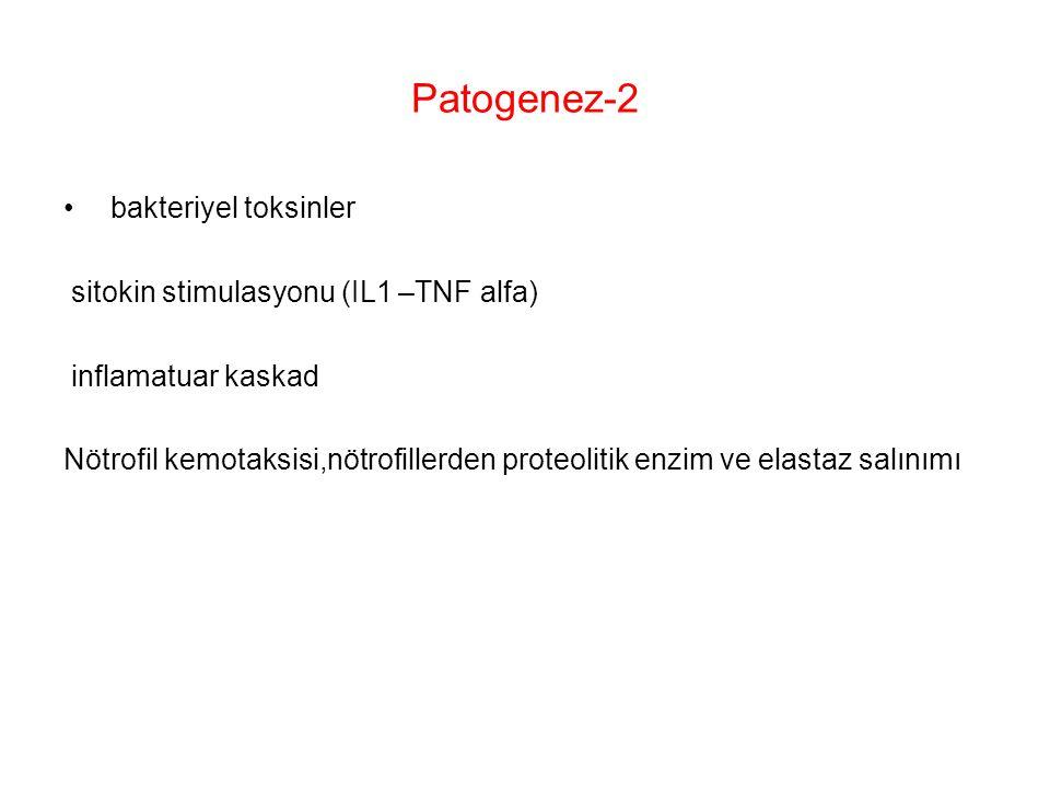 Patogenez-2 bakteriyel toksinler sitokin stimulasyonu (IL1 –TNF alfa) inflamatuar kaskad Nötrofil kemotaksisi,nötrofillerden proteolitik enzim ve elas