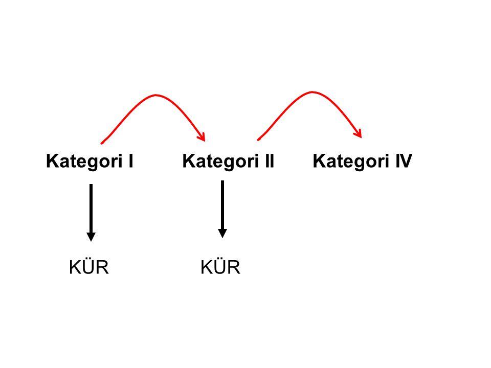 Kategori IKategori IIKategori IV KÜR