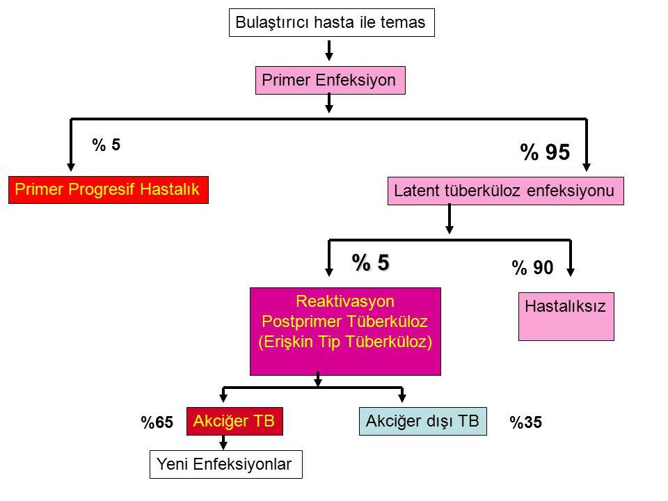 Bulaştırıcı hasta ile temas Primer Enfeksiyon Primer Progresif Hastalık Latent tüberküloz enfeksiyonu % 5 % 95 Reaktivasyon Postprimer Tüberküloz (Erişkin Tip Tüberküloz) % 5 Hastalıksız % 90 Akciğer TBAkciğer dışı TB Yeni Enfeksiyonlar %65%35