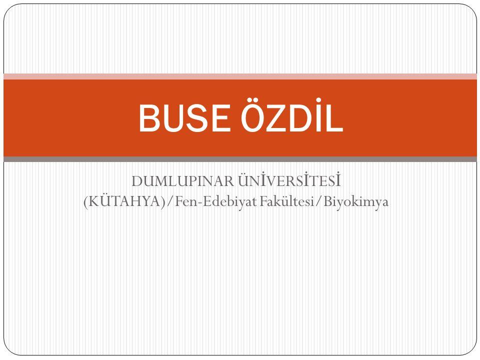 DUMLUPINAR ÜN İ VERS İ TES İ (KÜTAHYA)/Fen-Edebiyat Fakültesi/Biyokimya BUSE ÖZDİL