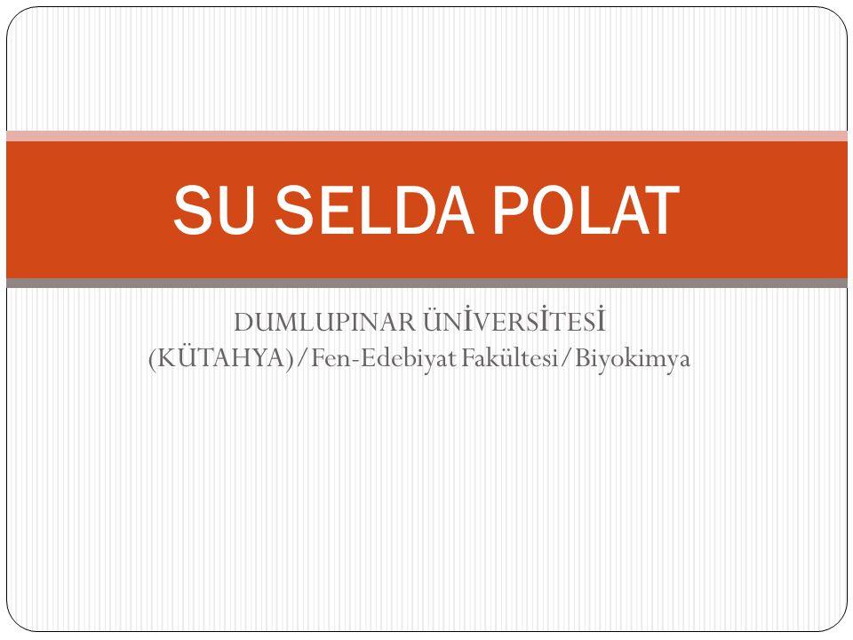 DUMLUPINAR ÜN İ VERS İ TES İ (KÜTAHYA)/Fen-Edebiyat Fakültesi/Biyokimya SU SELDA POLAT