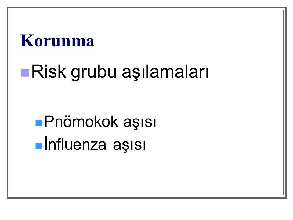 Pnömokok Aşısı S.pneumoniae'nın 23 purifiye kapsül polisakkarid antijeni.