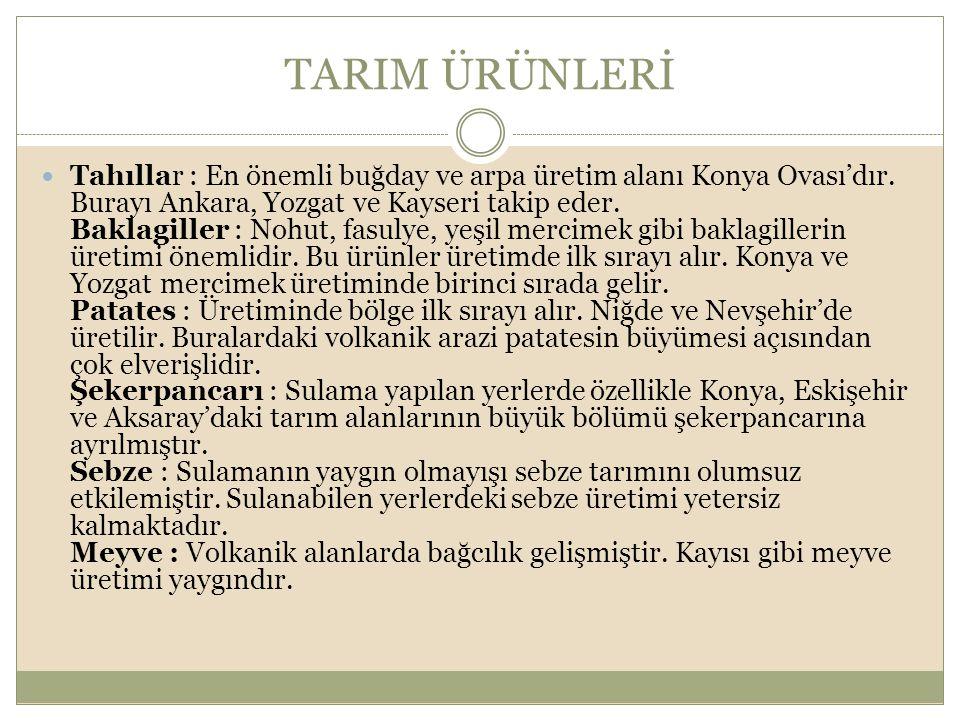 TARIM ÜRÜNLERİ Tahıllar : En önemli buğday ve arpa üretim alanı Konya Ovası'dır. Burayı Ankara, Yozgat ve Kayseri takip eder. Baklagiller : Nohut, fas