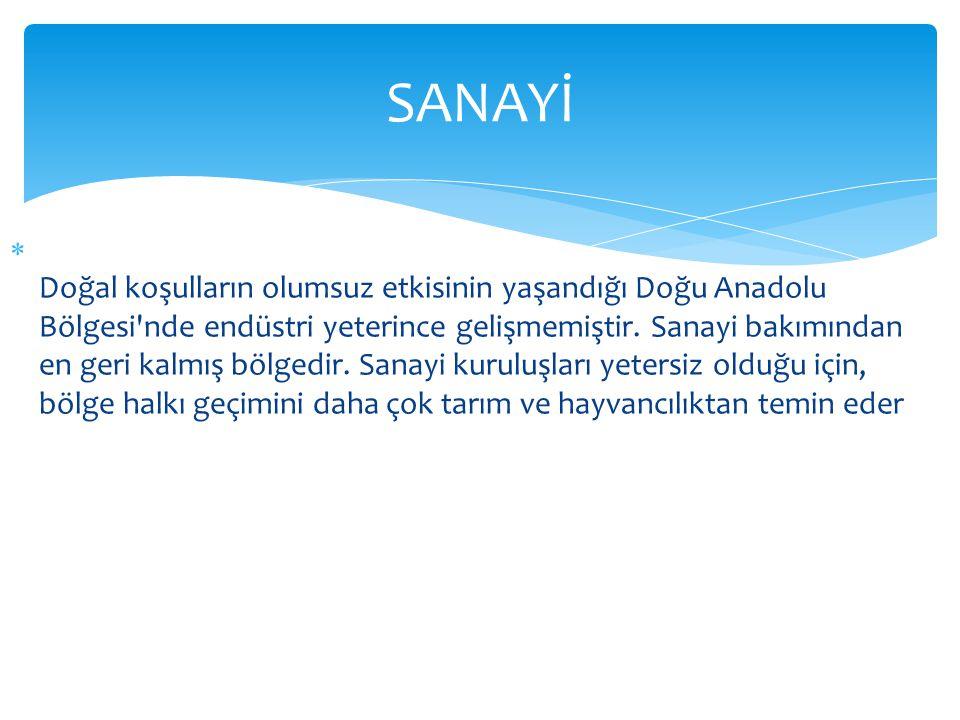  Doğal koşulların olumsuz etkisinin yaşandığı Doğu Anadolu Bölgesi nde endüstri yeterince gelişmemiştir.