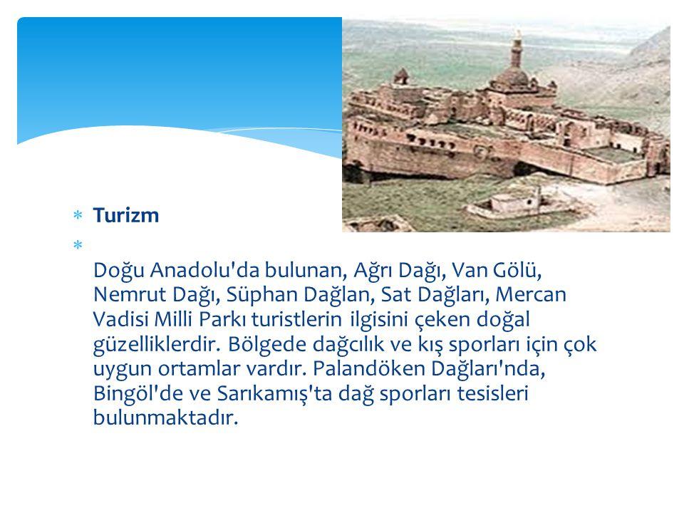  Turizm  Doğu Anadolu da bulunan, Ağrı Dağı, Van Gölü, Nemrut Dağı, Süphan Dağlan, Sat Dağları, Mercan Vadisi Milli Parkı turistlerin ilgisini çeken doğal güzelliklerdir.