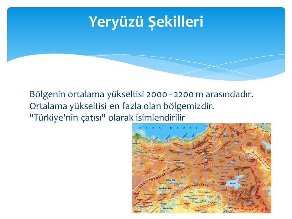 Bölgenin ortalama yükseltisi 2000 - 2200 m arasındadır.