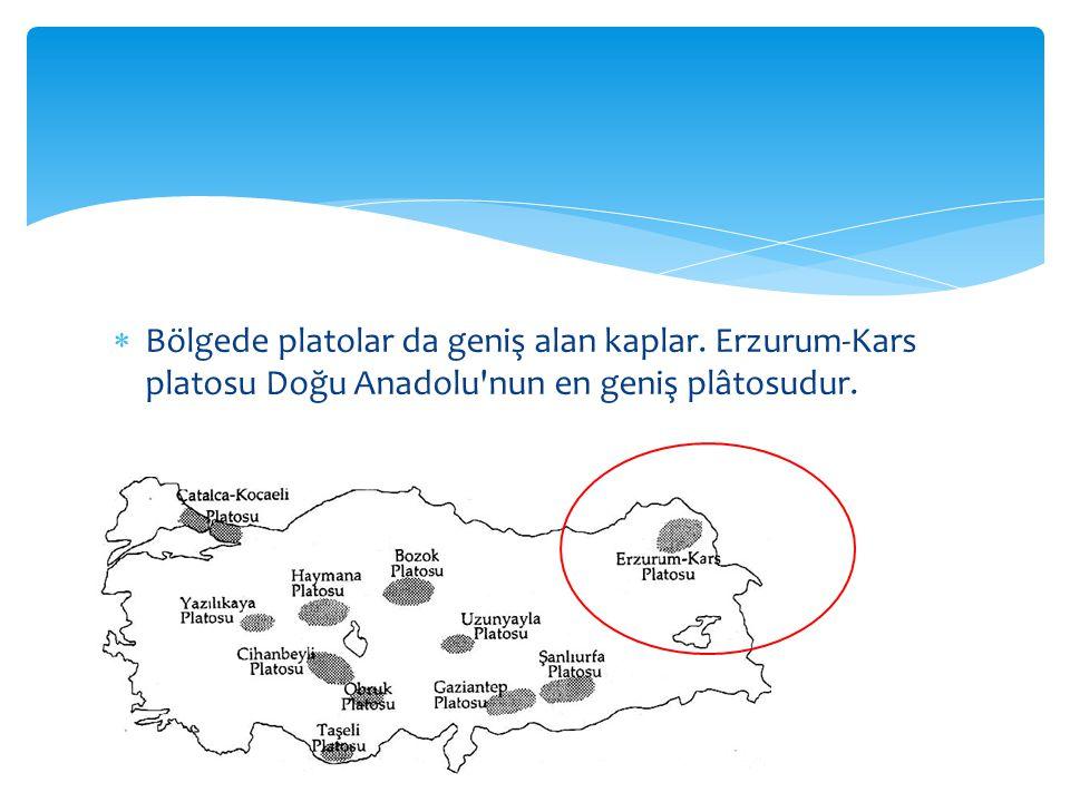  Bölgede platolar da geniş alan kaplar. Erzurum-Kars platosu Doğu Anadolu nun en geniş plâtosudur.