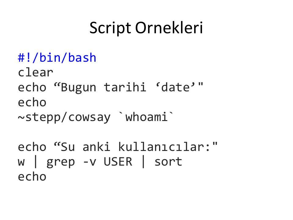 Script Ornekleri #!/bin/bash clear echo Bugun tarihi 'date' echo ~stepp/cowsay `whoami` echo Su anki kullanıcılar: w | grep -v USER | sort echo