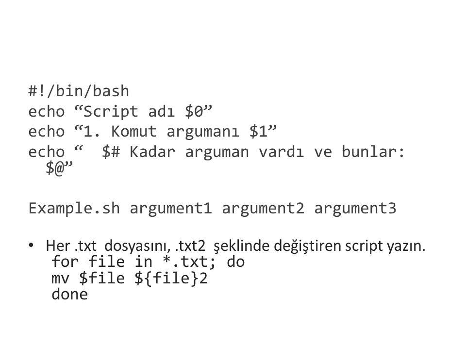 """#!/bin/bash echo """"Script adı $0"""" echo """"1. Komut argumanı $1"""" echo """" $# Kadar arguman vardı ve bunlar: $@"""" Example.sh argument1 argument2 argument3 Her"""