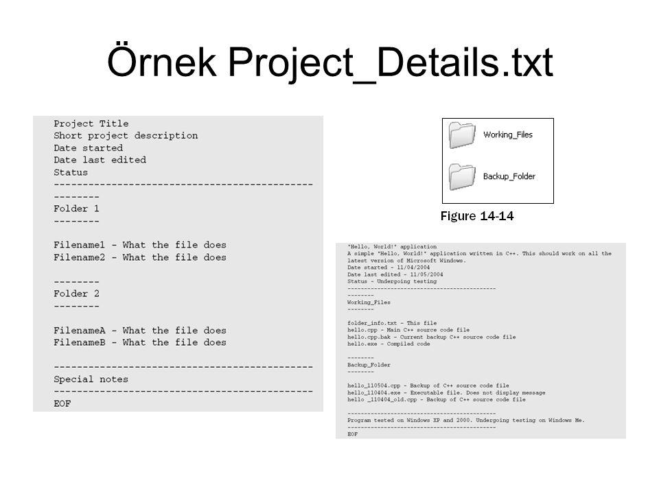 Örnek Project_Details.txt