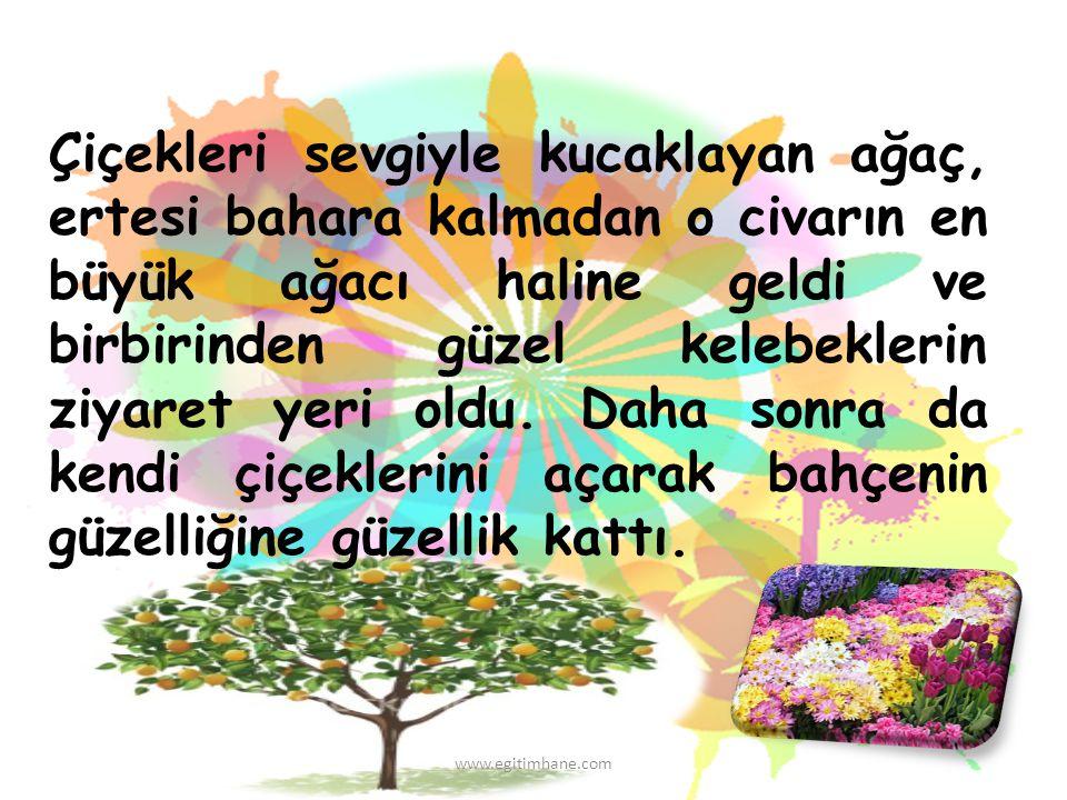 Çiçekleri sevgiyle kucaklayan ağaç, ertesi bahara kalmadan o civarın en büyük ağacı haline geldi ve birbirinden güzel kelebeklerin ziyaret yeri oldu.