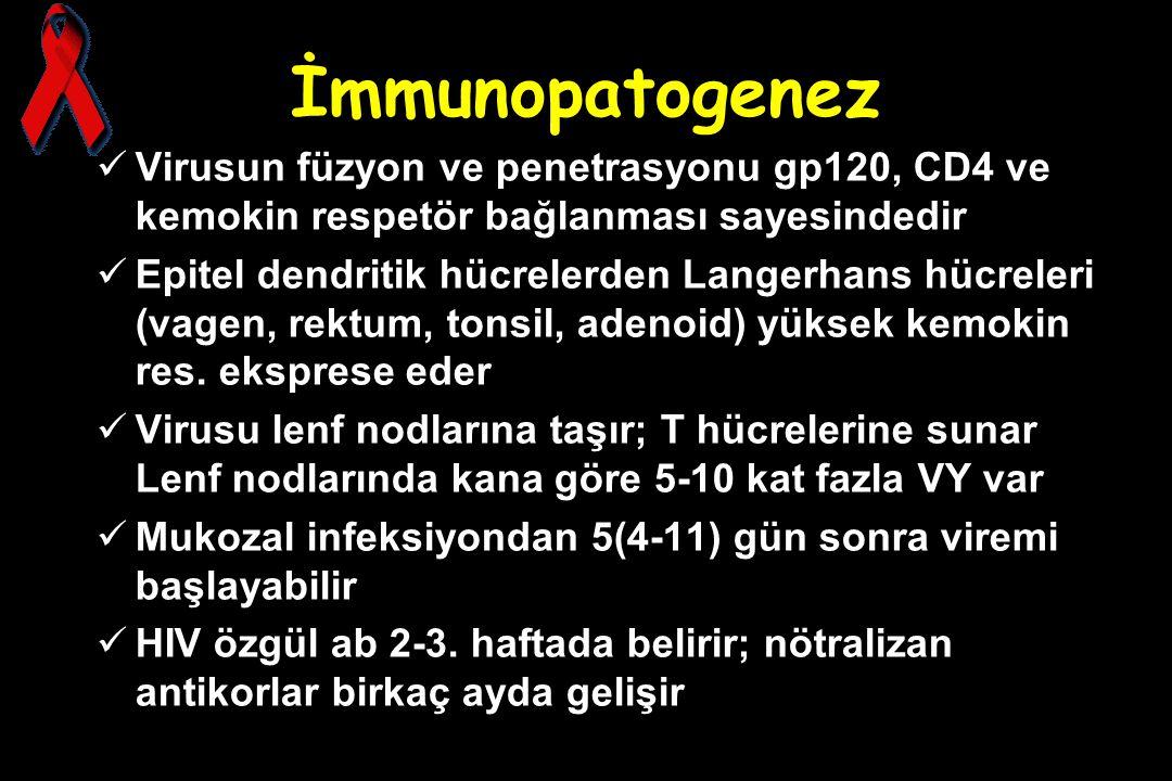İmmunopatogenez Virusun füzyon ve penetrasyonu gp120, CD4 ve kemokin respetör bağlanması sayesindedir Epitel dendritik hücrelerden Langerhans hücreler