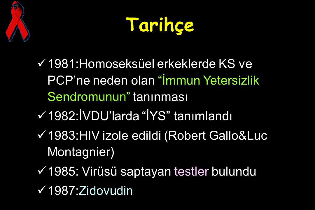 """Tarihçe 1981:Homoseksüel erkeklerde KS ve PCP'ne neden olan """"İmmun Yetersizlik Sendromunun"""" tanınması 1982:İVDU'larda """"İYS"""" tanımlandı 1983:HIV izole"""