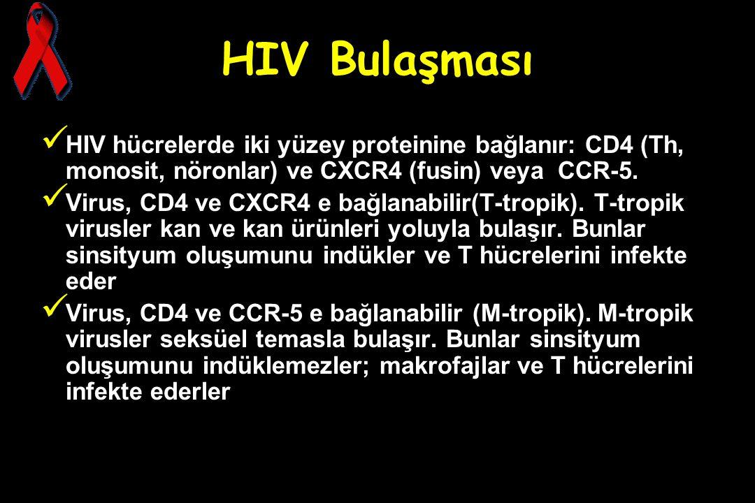 HIV Bulaşması HIV hücrelerde iki yüzey proteinine bağlanır: CD4 (Th, monosit, nöronlar) ve CXCR4 (fusin) veya CCR-5. Virus, CD4 ve CXCR4 e bağlanabili