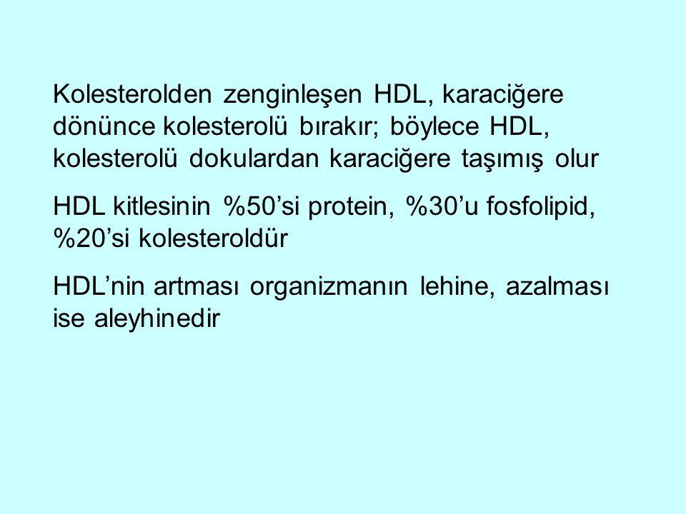 Kolesterolden zenginleşen HDL, karaciğere dönünce kolesterolü bırakır; böylece HDL, kolesterolü dokulardan karaciğere taşımış olur HDL kitlesinin %50'