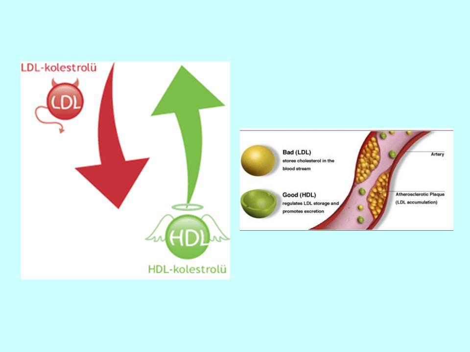 Lp (a), LDL'ye benzeyen bir lipoproteindir.Başlıca apolipoproteini apo B-100'dür.