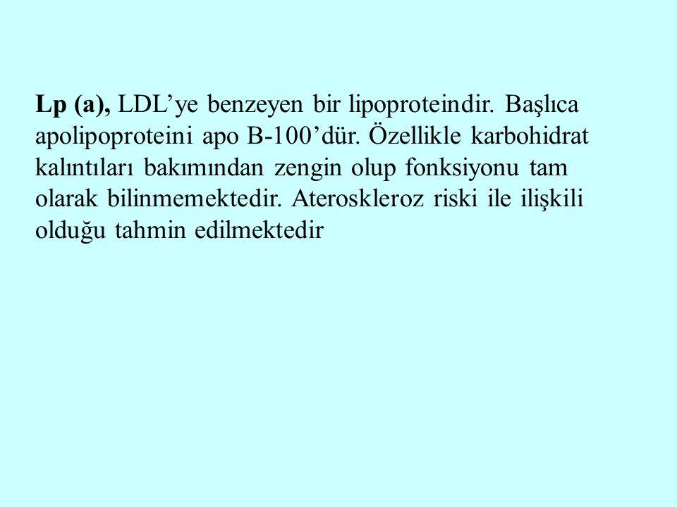 Lp (a), LDL'ye benzeyen bir lipoproteindir. Başlıca apolipoproteini apo B-100'dür. Özellikle karbohidrat kalıntıları bakımından zengin olup fonksiyonu