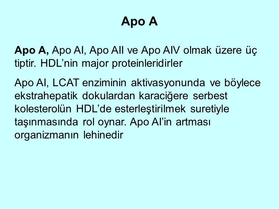 Apo B Apo B, HDL dışındaki bütün lipoproteinlerin başta gelen proteinidir.