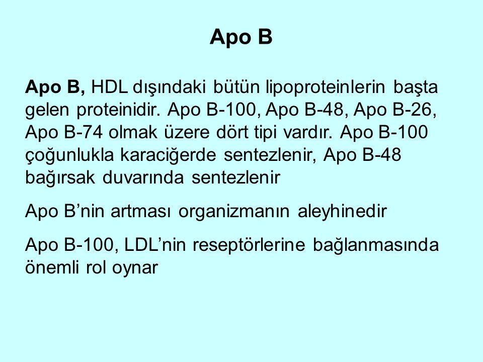Apo B Apo B, HDL dışındaki bütün lipoproteinlerin başta gelen proteinidir. Apo B-100, Apo B-48, Apo B-26, Apo B-74 olmak üzere dört tipi vardır. Apo B