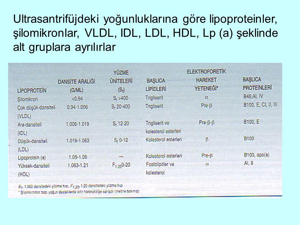 Ultrasantrifüjdeki yoğunluklarına göre lipoproteinler, şilomikronlar, VLDL, IDL, LDL, HDL, Lp (a) şeklinde alt gruplara ayrılırlar