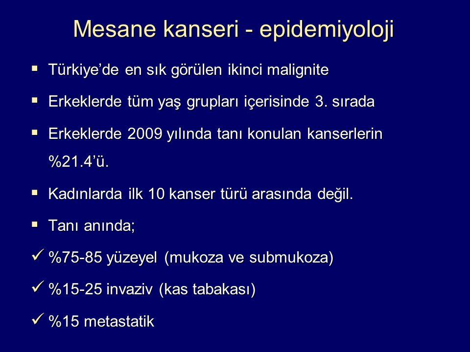 Mesane kanseri - epidemiyoloji  Türkiye'de en sık görülen ikinci malignite  Erkeklerde tüm yaş grupları içerisinde 3. sırada  Erkeklerde 2009 yılın