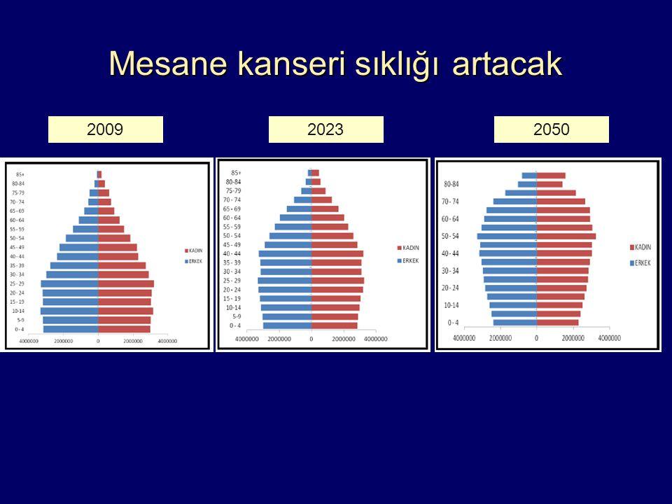 Mesane kanseri sıklığı artacak 200920232050