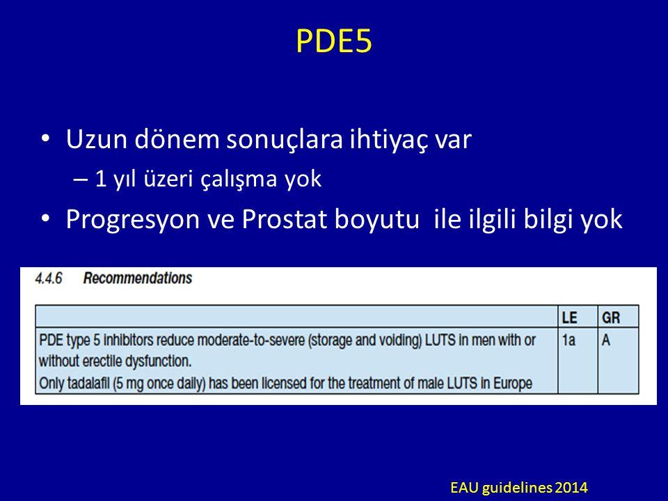 PDE5 Uzun dönem sonuçlara ihtiyaç var – 1 yıl üzeri çalışma yok Progresyon ve Prostat boyutu ile ilgili bilgi yok EAU guidelines 2014