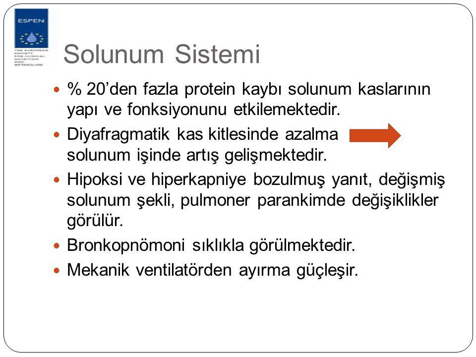 Solunum Sistemi % 20'den fazla protein kaybı solunum kaslarının yapı ve fonksiyonunu etkilemektedir. Diyafragmatik kas kitlesinde azalma solunum işind
