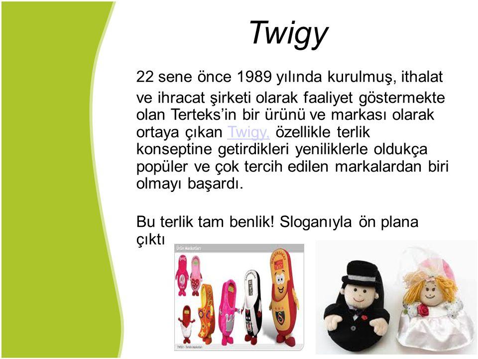 Twigy 22 sene önce 1989 yılında kurulmuş, ithalat ve ihracat şirketi olarak faaliyet göstermekte olan Terteks'in bir ürünü ve markası olarak ortaya çı