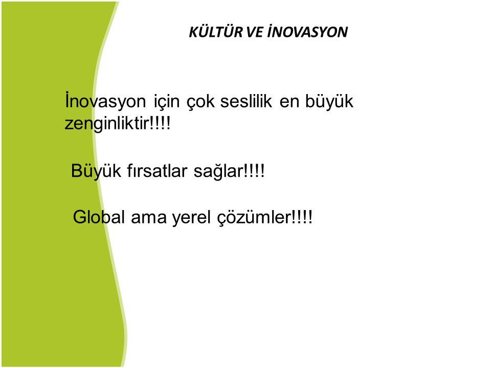 KÜLTÜR VE İNOVASYON İnovasyon için çok seslilik en büyük zenginliktir!!!! Büyük fırsatlar sağlar!!!! Global ama yerel çözümler!!!!