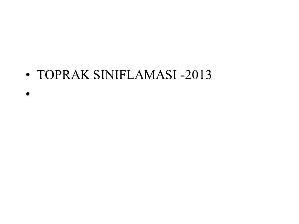 TOPRAK SINIFLAMASI -2013