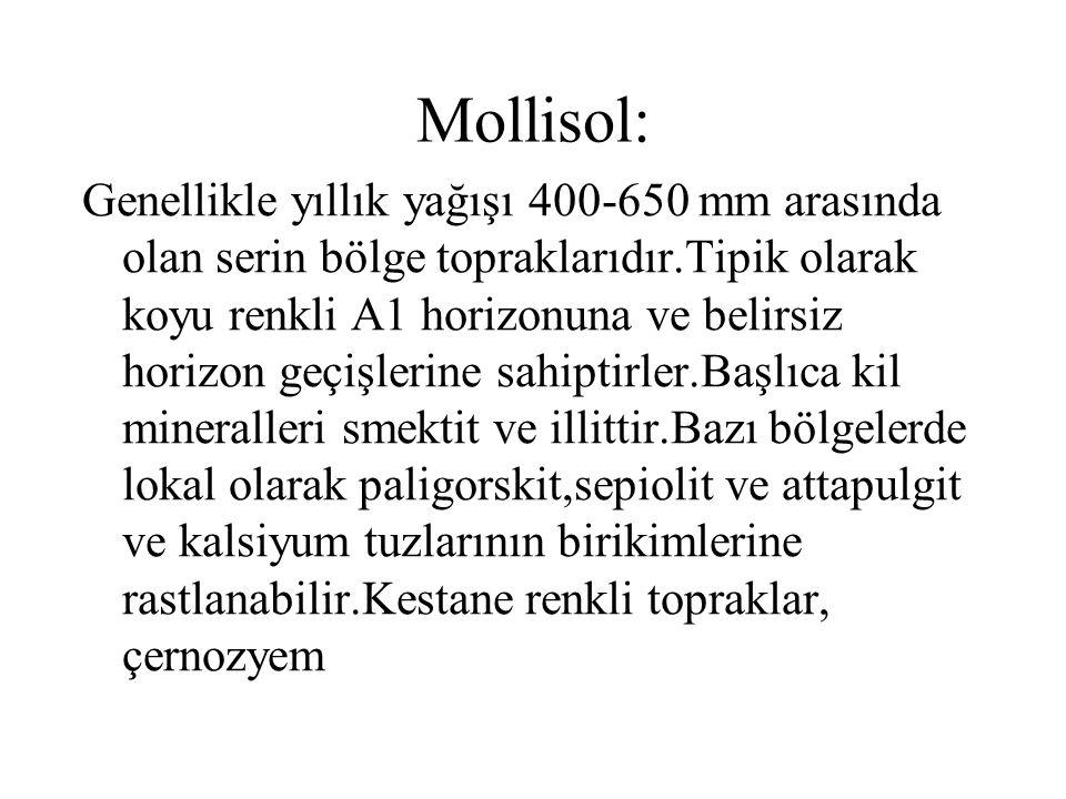 Mollisol: Genellikle yıllık yağışı 400-650 mm arasında olan serin bölge topraklarıdır.Tipik olarak koyu renkli A1 horizonuna ve belirsiz horizon geçiş