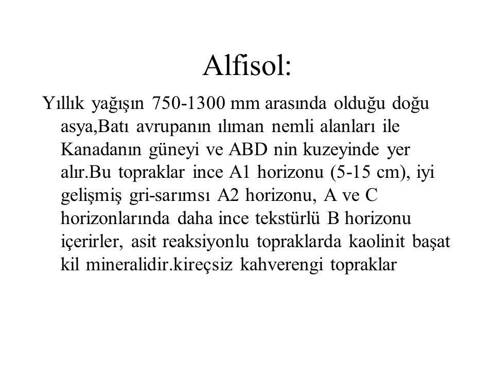 Alfisol: Yıllık yağışın 750-1300 mm arasında olduğu doğu asya,Batı avrupanın ılıman nemli alanları ile Kanadanın güneyi ve ABD nin kuzeyinde yer alır.